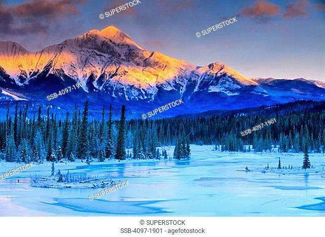 River flowing through a forest with mountain in the background, Athabasca River, Pyramid Mountain, Jasper National Park, Alberta, Canada