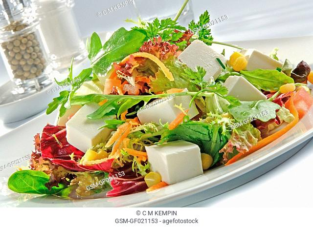 Salad with various lettuce, tomato, cheese, red onion, carrot, corn, and cheese