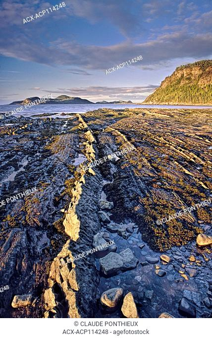 Rock layers at low tide in the Bic National Park, Lower Saint-Lawrence region, Québec, Canada