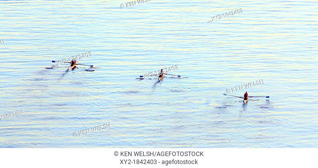 Scullers on Malaga bay, Spain