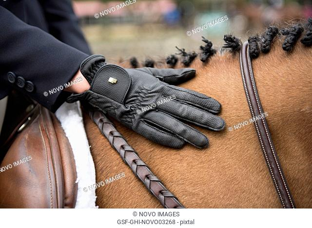 Competitive Rider with Hand on Horse's Mane
