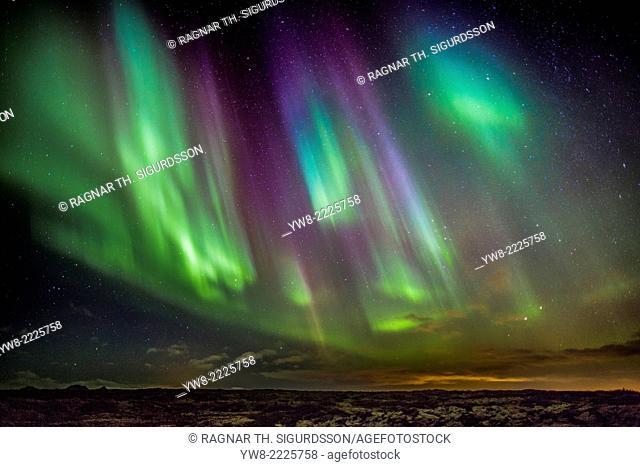 Aurora Borealis or Northern Lights, Alftanes, Iceland