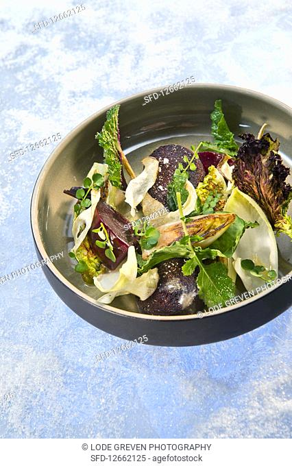 Natural cuisine: beetroot salad with black pudding, chicory and water cress