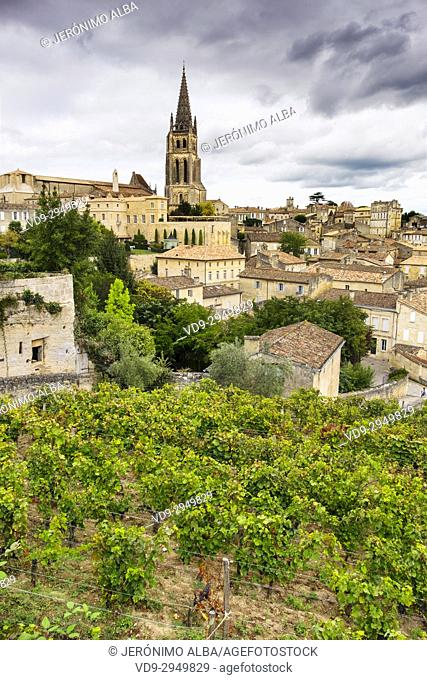 Panoramic view & vineyards, Saint-Emilion Bordeaux wine region. Aquitaine Region, Gironde Department. France Europe