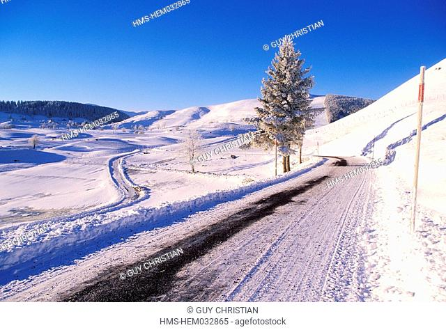 France, Puy de Dome, Cezallier plateau, snow covered road close to Boutaresse village