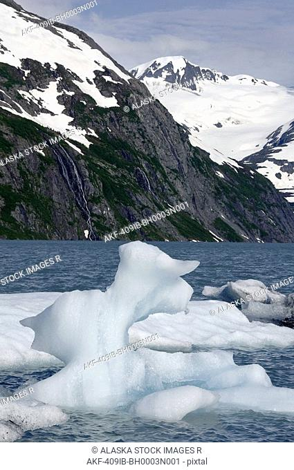 Icebergs in Portage Lake during Summer, Southcentral Alaska