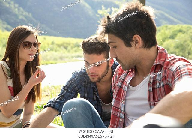Friends sitting having picnic