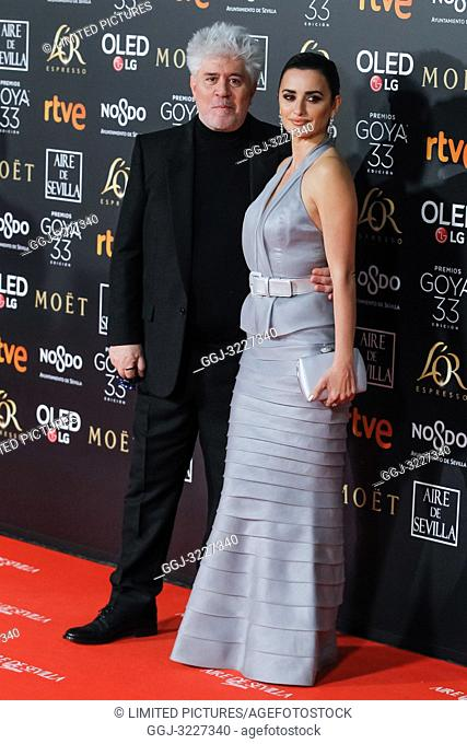 Penelope Cruz attends the Spanish Cinema awards Goya 33rd edition at FIBE attends 33rd Goya Cinema Awards 2019 at Palacio de Congresos y Exposiciones FIBES on...