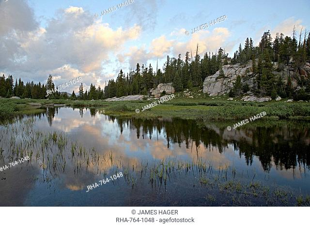 Litte Bear Creek at sunrise, Shoshone National Forest, Montana, United States of America, North America