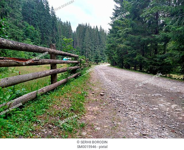 Dirt road near a wooden fence in the mountains Carpathians wild nature village Rural area nature