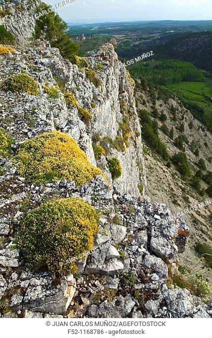 La Galiana viewpoint, Cañón del Río Lobos Natural Park, Ucero, Soria province, Castilla-Leon, Spain