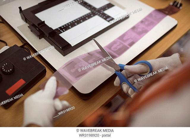 Female photographer cutting filmstrip with photos
