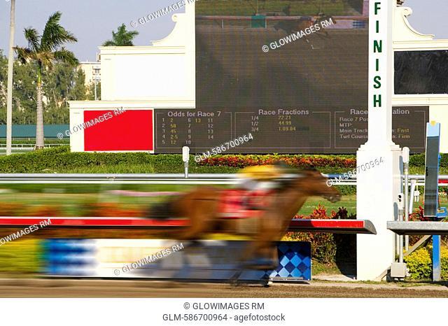 Side profile of a jockey on a horse at the finish line, Miami, Florida, USA