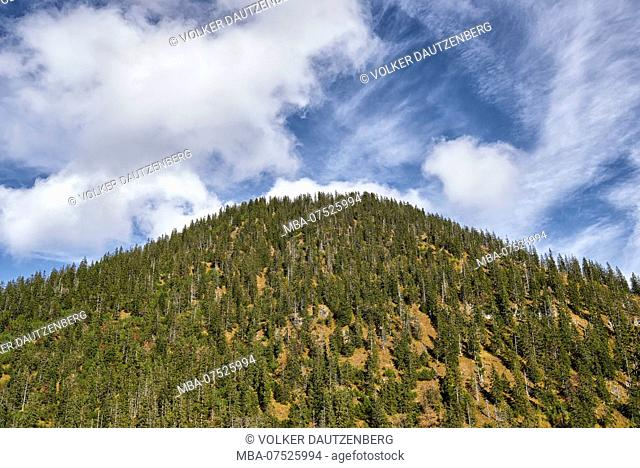 View of Fischbachkopf Peak from Lakaiensteig Mountain Path