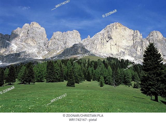 Rosengarten with meadow