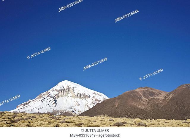 Bolivia, national park Sajama, volcano Nevado Sajama