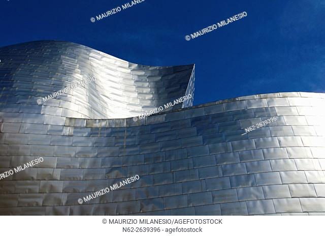 Details of the Guggenheim Museum built in 1997 by canadian architect Frank Gehry, Bilbao, Spain, Euskadi, Biscaya