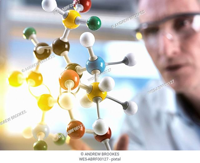 Scientist looking at molecular model