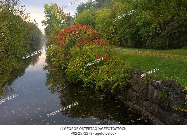 Red sumac by the Old Erie Canal, Old Erie Canal State Historic Park, New York