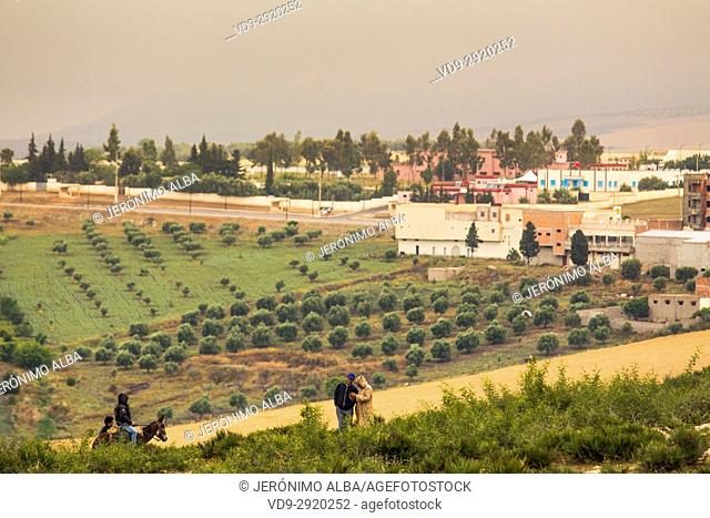 Agriculture. Rural community Zeguota. Morocco, Maghreb North Africa