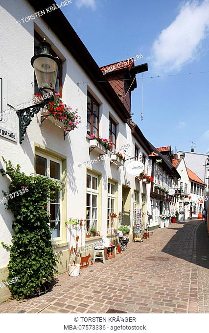 Historic facades, Bergstrasse Pedestrian Zone, City of Oldenburg in the District of Oldenburg, Lower Saxony, Germany, Europe