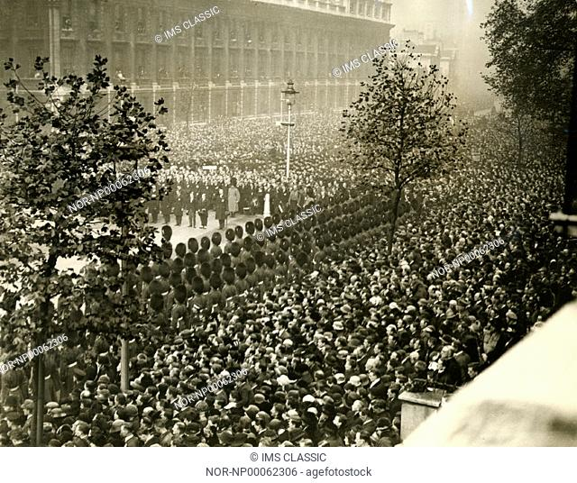 A huge crowd of people watch a military parade