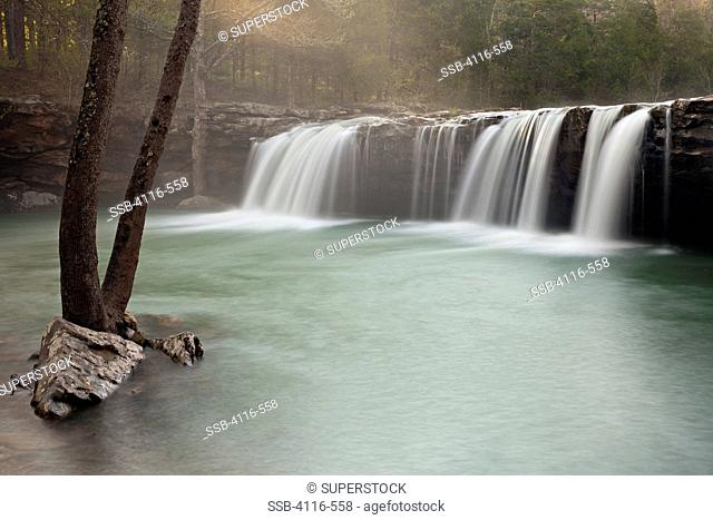 Waterfall in a forest, Falling Water Falls, Falling Water Creek, Arkansas, USA