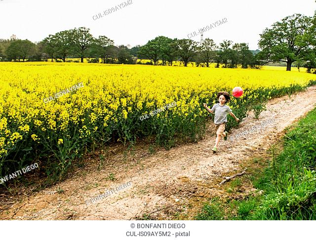 Boy running along yellow flower field track pulling red balloon