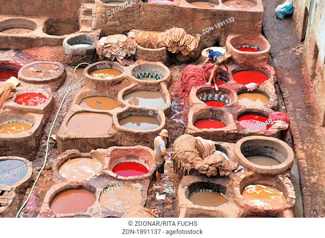 Chuwwara tanners, the tanning district in the Medina of Fez el-Bali, Fez, Morocco, Africa