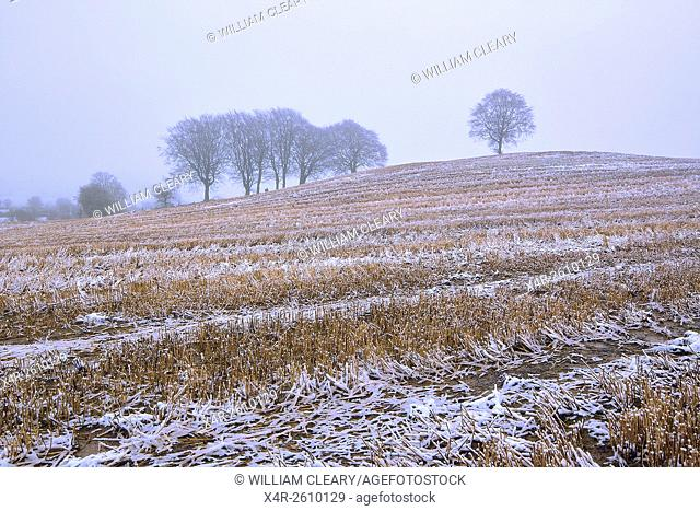 A harvested barley field dusted with snow, County Westmeath, Ireland