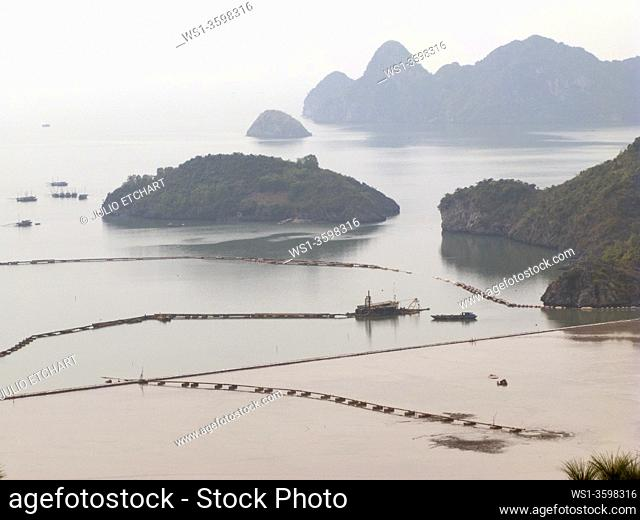 TOURIST AND FISHING BOATS IN HALONG BAY, VIETNAM