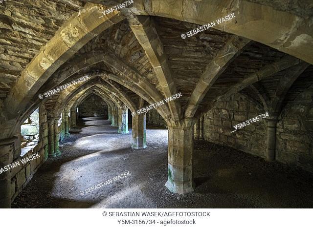 Finchale Priory, Durham, England, United Kingdom, Europe