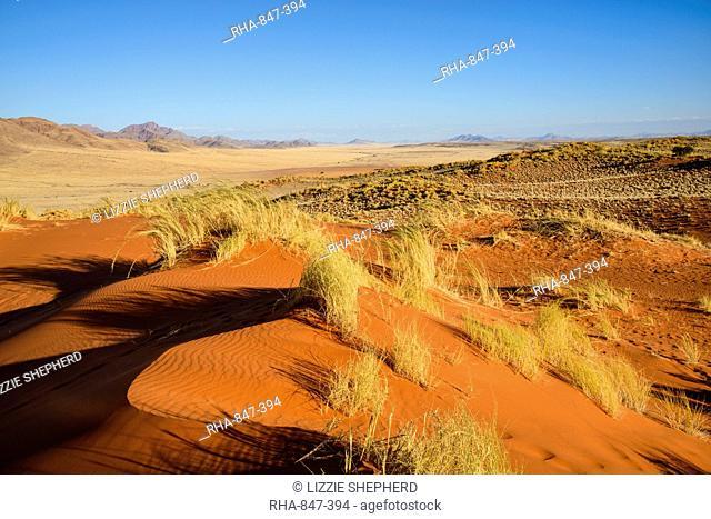 The red oxidised sand of the NamibRand dunes, Namib Desert, Namibia, Africa