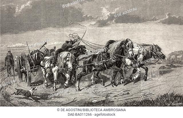 Drawing timber in Picardy, carriage with horses and tree trunks, engraving from a painting by Richard Beavis (1824-1896)