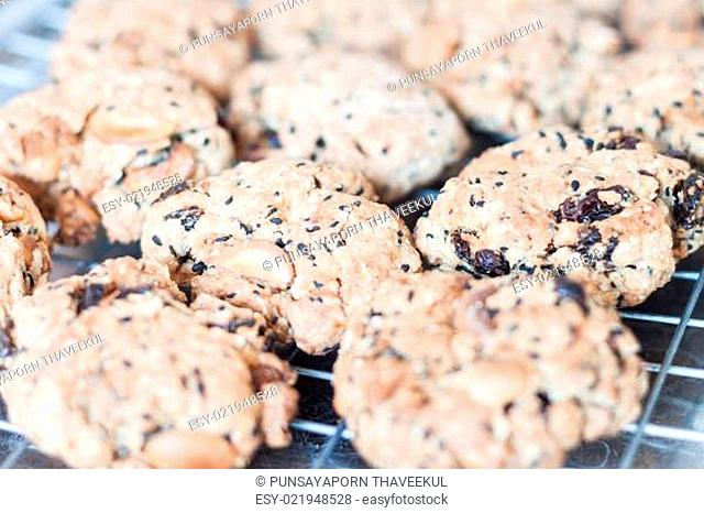 Closeup mixed nut cookies cooling on a rack