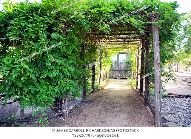 Vine covered walkway in Texas Hill Country
