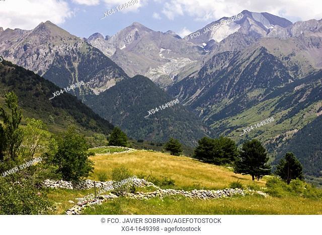Tena Valley - Sallent de Gallego - Pyrenees - Aragon Pyrenees - Huesca province - Aragon - Spain - Europe