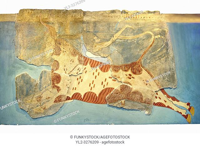 Mycenaean Fresco wall painting of a man leaping over a bull from the Tiryns, Greece. 14th - 13th Century BC. Athens Archaeological Museum