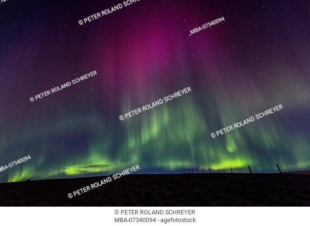 Iceland, Northern Lights, Green, Purple, Starry Sky, Aurora Borealis, South Iceland, Pasture Fence