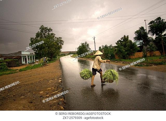 A woman returns to the field after a rain on a road on the outskirts of Mui Ne. Vietnam