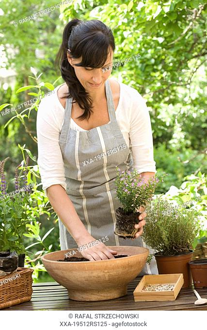 Woman replanting plants