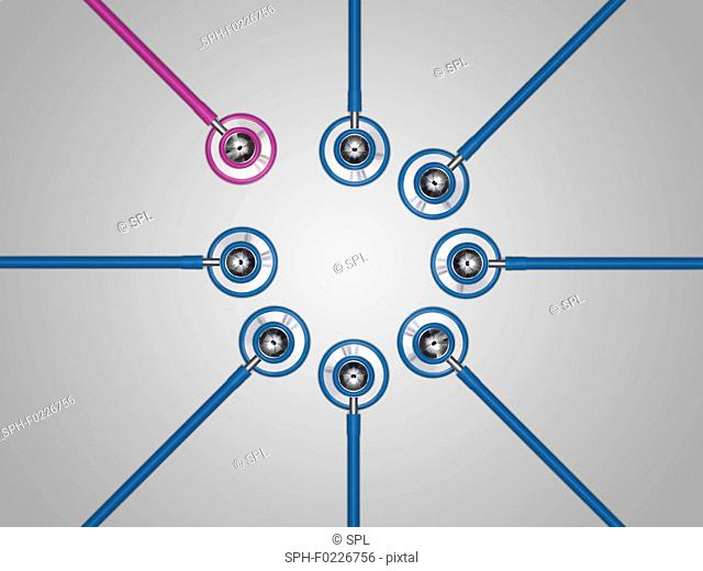 Pink and blue stethoscopes in a circle