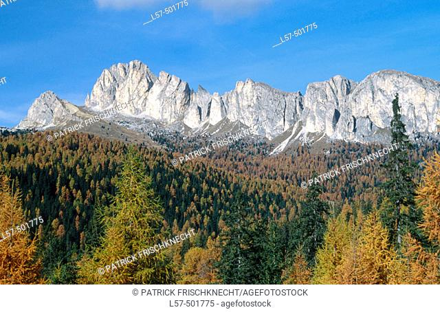 Dolomites and larches near Passo del Falzarego. Italy