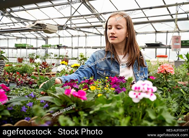 Girl tending to flowers in a greenhouse