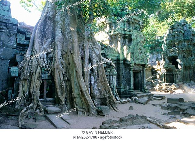 Tree roots growing over ruins at archaeological site, Ta Prohm temple, Angkor, UNESCO World Heritage Site, Cambodia, Indochina, Southeast Asia, Asia