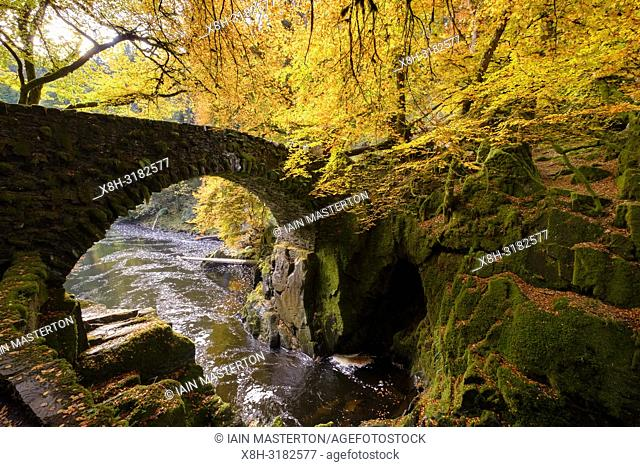 Spectacular autumn colours in the trees at The Hermitage a famous beauty spot near Dunkeld in Perthshire. Pictured is Hermitage Bridge spanning the River Braan