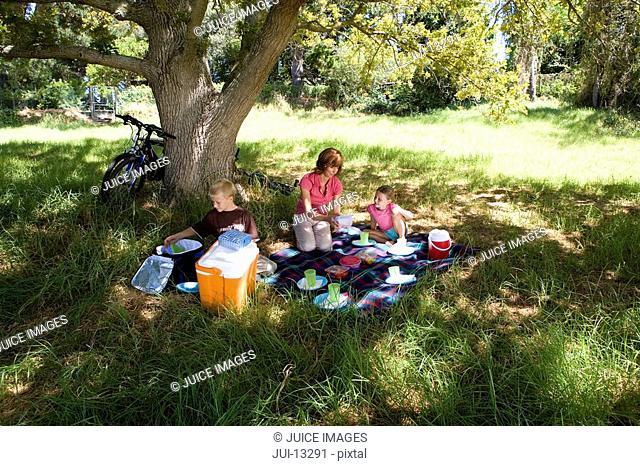 Family of three having picnic beneath tree