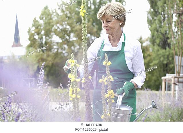 Mature woman holding watering can in garden