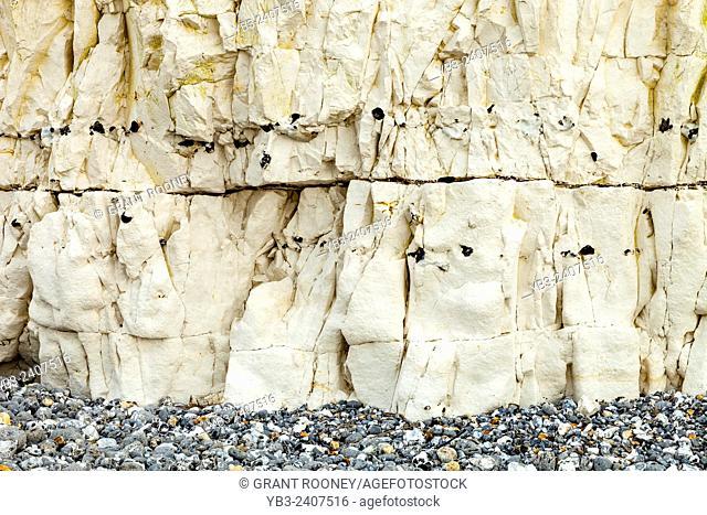 Chalk Cliffs At Birling Gap, East Dean, Sussex, UK