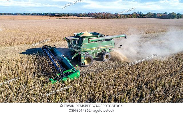 Aerial view of combine harvester driving through rows of soybeans and kicking up dust, Maryland, USA